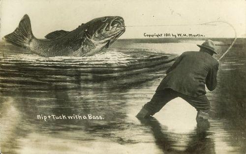 Tall tale postcard fish