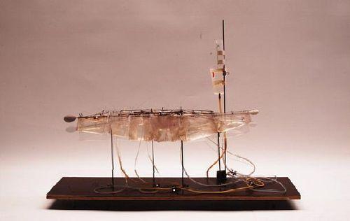 Aeromodeller model
