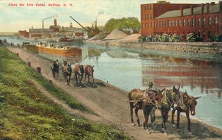 Erie canal barges towed by mules