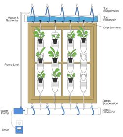 Window farms
