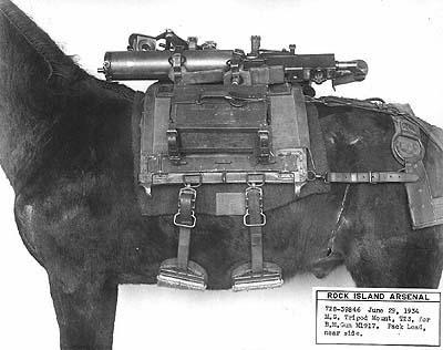 Philips pack saddle 1