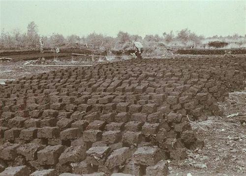 Peat netherlands