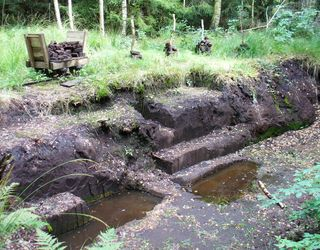 Peat digging above the water table