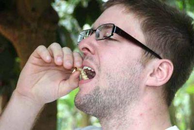Menselijke insecteneter
