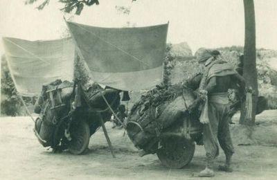 Chinese kruiwagens met zeil