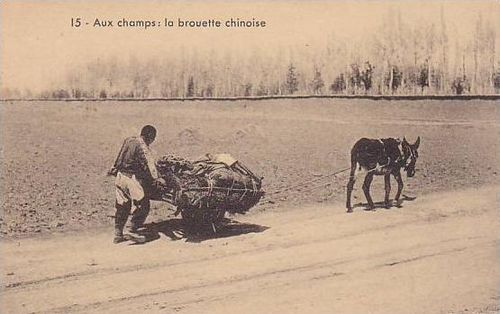 Chinese wheelbarrow animal traction2