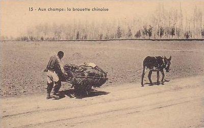 Chinese kruiwagen hybride mens en lastdier