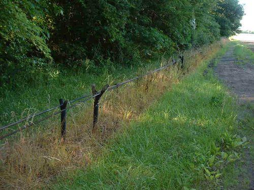 Rod lines in oil field 2