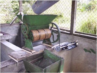 Hydro powered coffee depulper 2