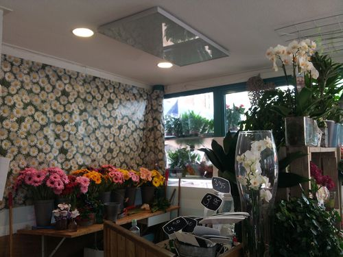 Infraroodverwarming in bloemenwinkel