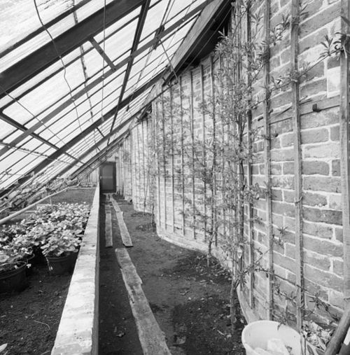Greenhouse against the wall