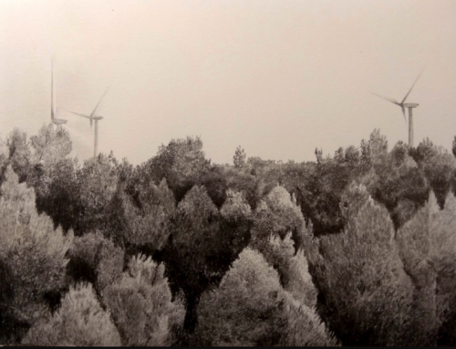 Forest-of-wind-turbines-low-res