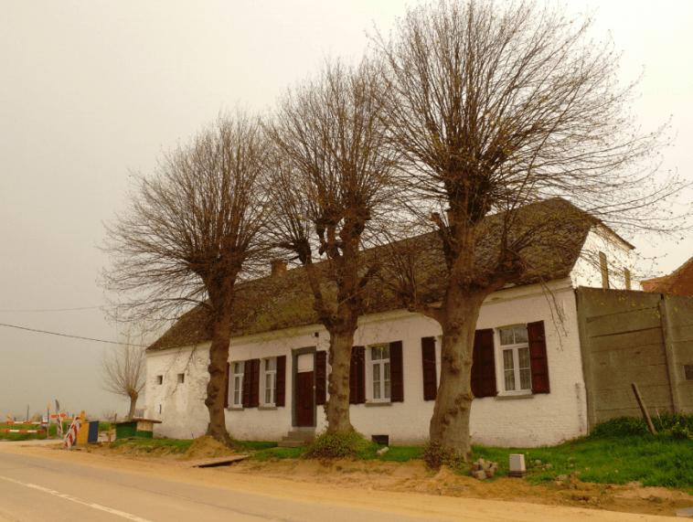 Schermbeplanting-gebouw-min