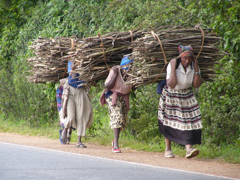 AFRICAN_WOMEN_CARRING_FIREWOOD