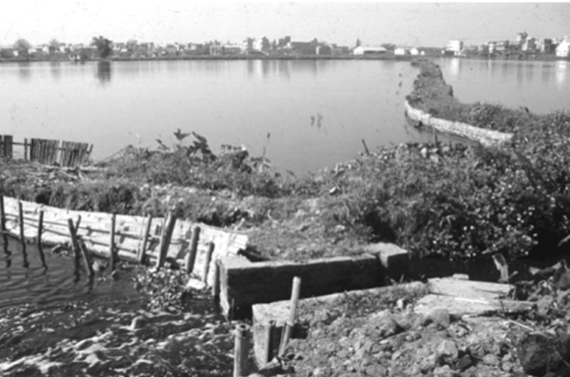 Fish-pond-hanoi-min